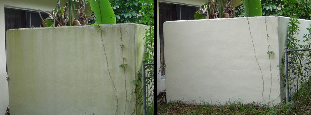 Exterior House Algae Removal Largo Florida