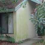 Exterior House Washing Clearwater Florida Before