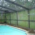 Pool Enclosure and Deck Cleaning Clearwater, FL Before