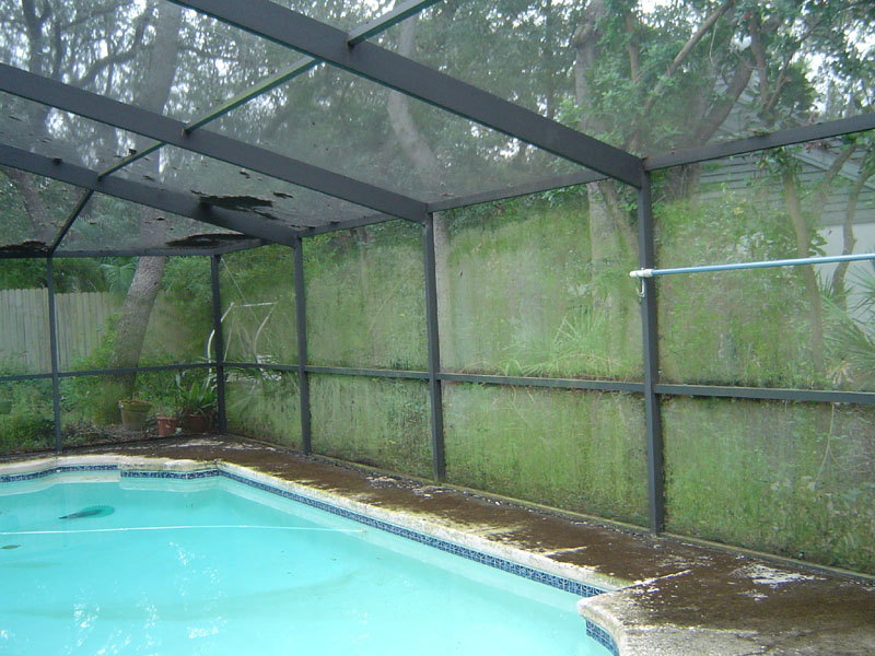 Pool Enclosure And Deck Cleaning Clearwater Fl Before
