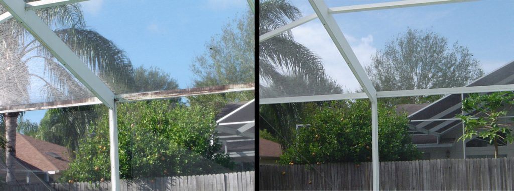 Pool Enclosure Cleaning Palm Harbor, FL