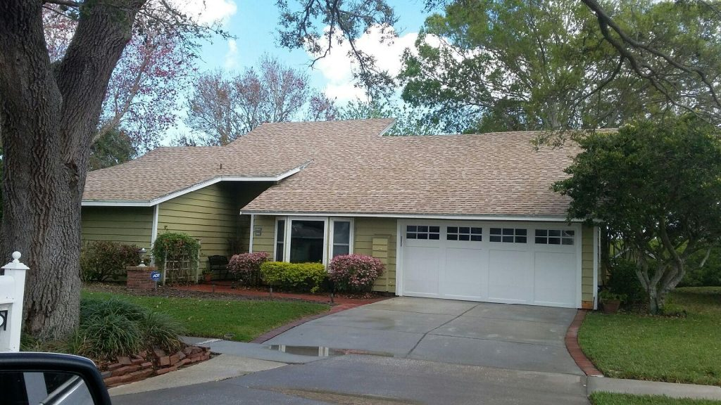 Shingle Roof Cleaning Palm Harbor, FL After