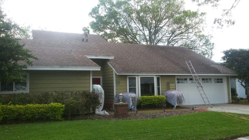 Shingle Roof Cleaning Palm Harbor, FL Before