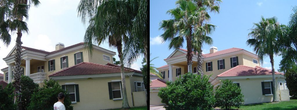 Tile Roof Cleaning Oldsmar, FL